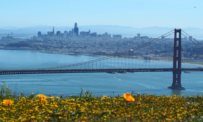Photo of What You Must Do In San Francisco