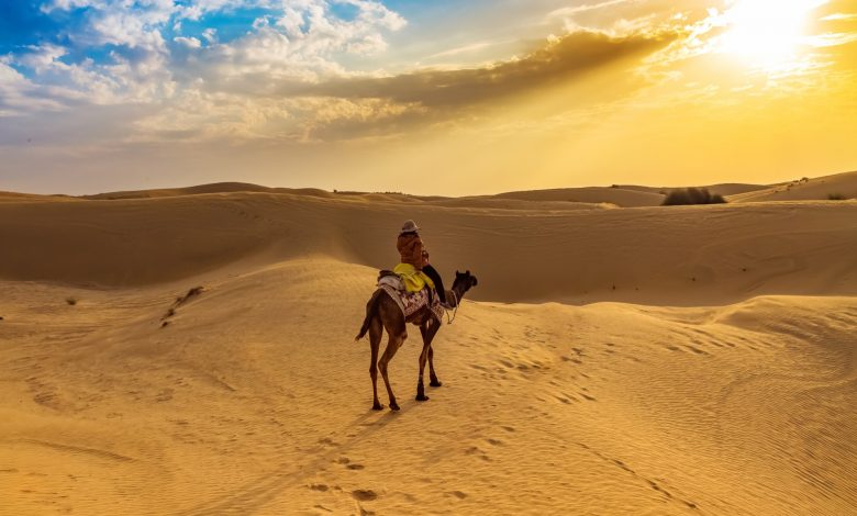 Photo of Best Places For An Outing In Rajasthan